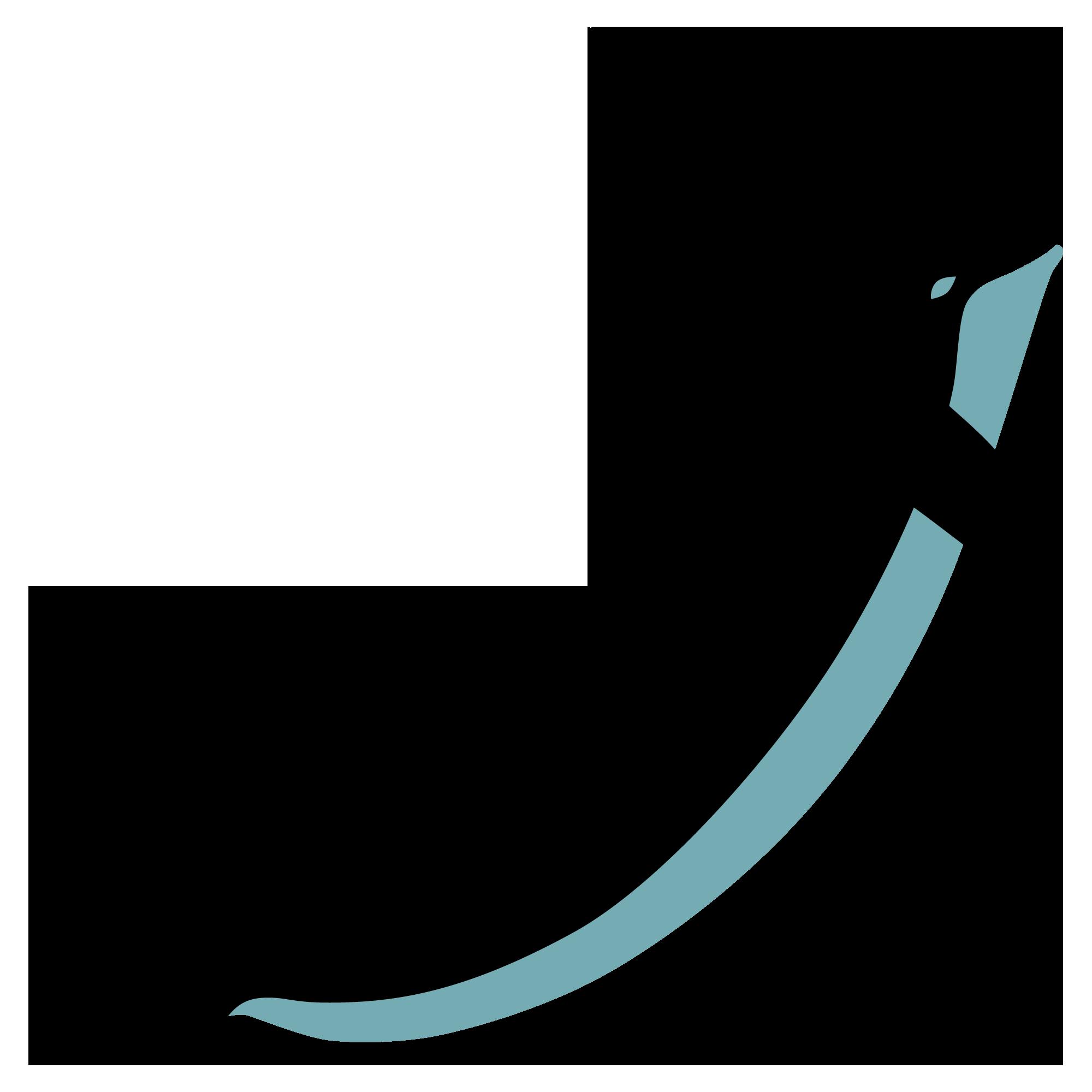 Stuhr marsvin